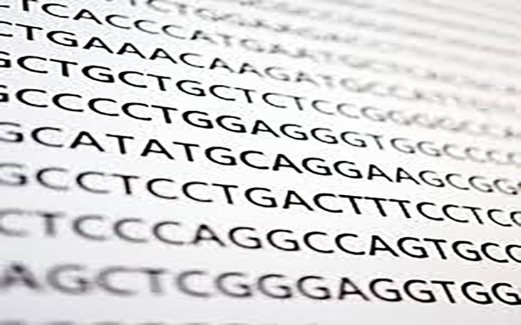 Peste 60% din succesul academic e influențat de gene